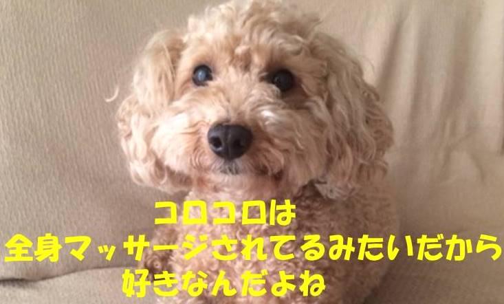 f:id:nanachan59:20180607182004j:plain