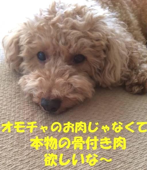 f:id:nanachan59:20180615175635j:plain
