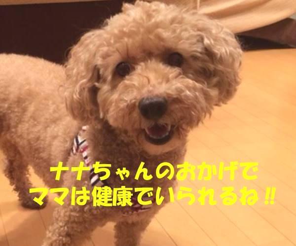 f:id:nanachan59:20180701205936j:plain