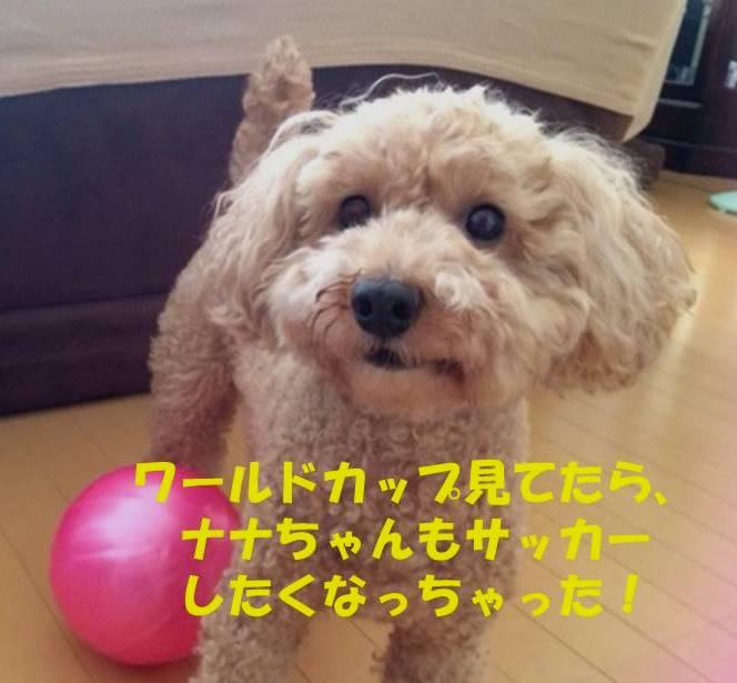 f:id:nanachan59:20180707160932j:plain