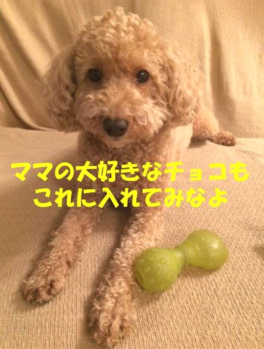 f:id:nanachan59:20180721210931j:plain