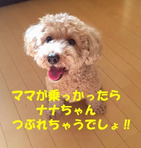 f:id:nanachan59:20180728181046j:plain