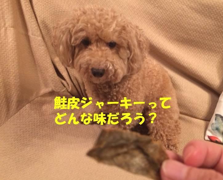 f:id:nanachan59:20180730212123j:plain