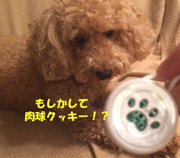 f:id:nanachan59:20180801222519j:plain