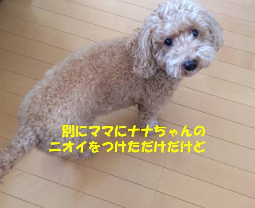 f:id:nanachan59:20180810162010j:plain
