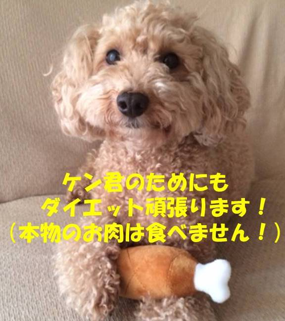 f:id:nanachan59:20180828172317j:plain