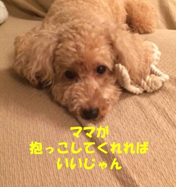 f:id:nanachan59:20180831210524j:plain