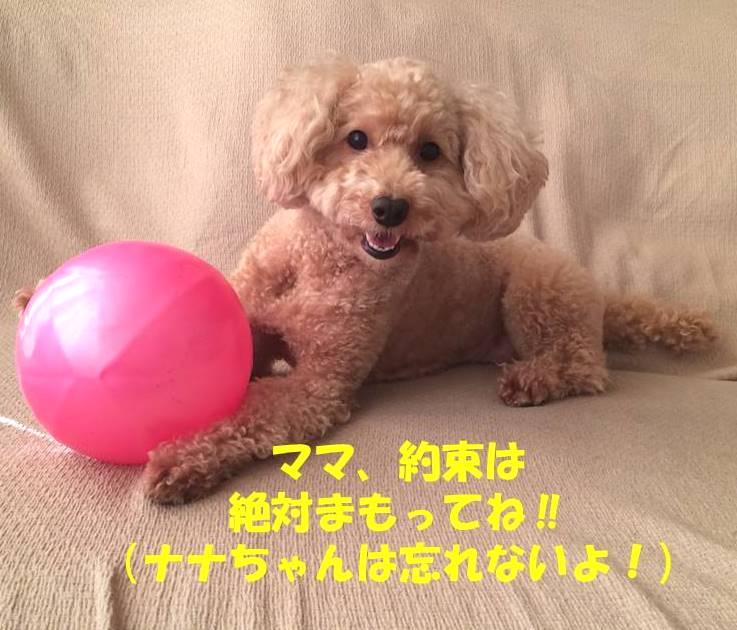 f:id:nanachan59:20180903171453j:plain