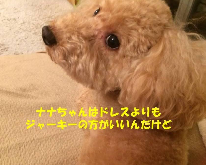 f:id:nanachan59:20180919173521j:plain
