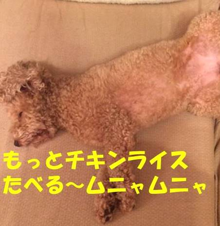 f:id:nanachan59:20180926174129j:plain