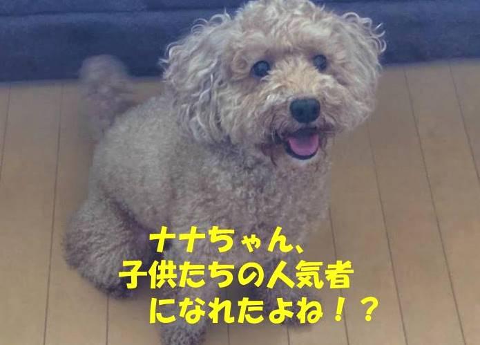 f:id:nanachan59:20181006174002j:plain