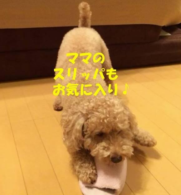 f:id:nanachan59:20181016180140j:plain