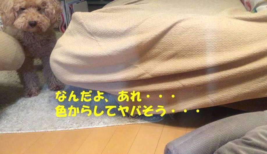 f:id:nanachan59:20181218173923j:plain