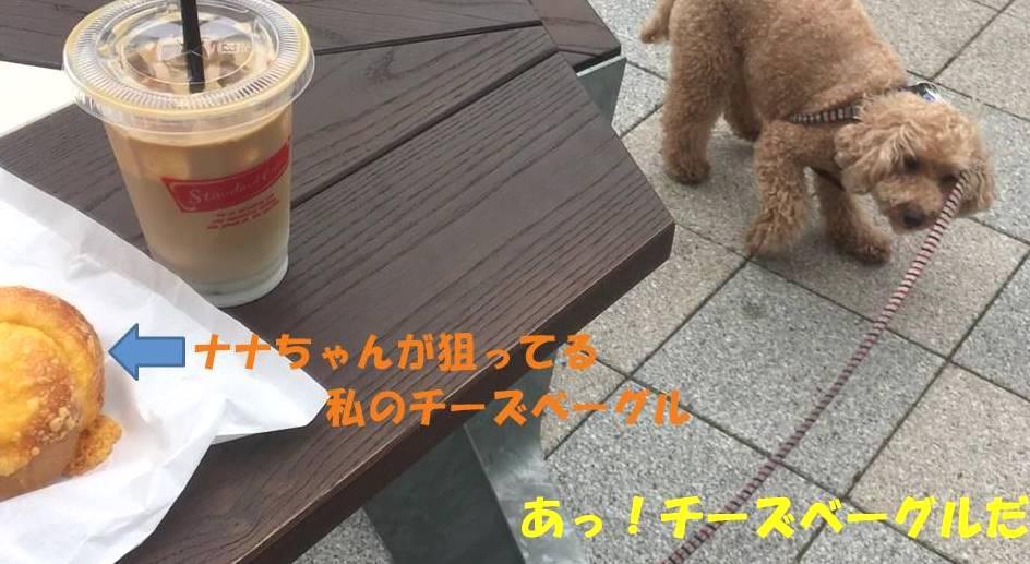 f:id:nanachan59:20190711144726j:plain
