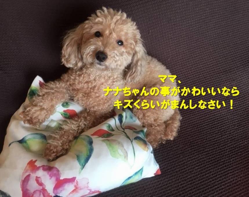 f:id:nanachan59:20191008154617j:plain