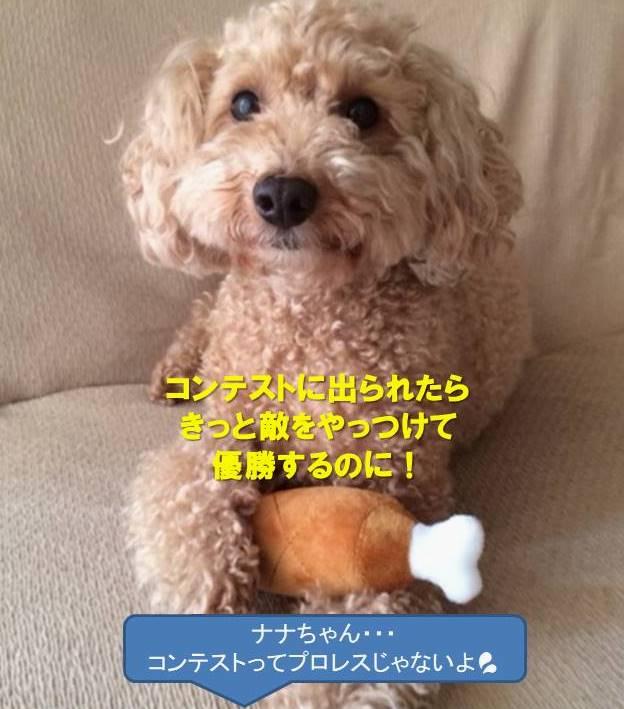 f:id:nanachan59:20200110164848j:plain