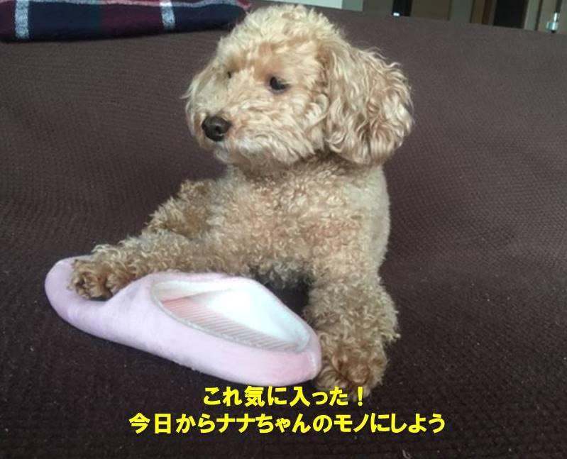 f:id:nanachan59:20200119170259j:plain