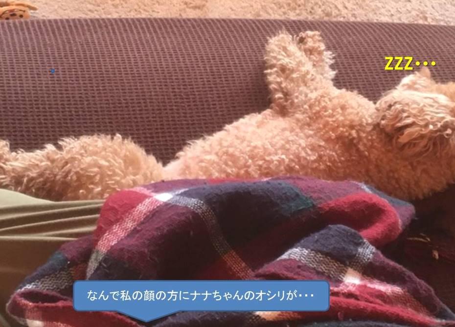 f:id:nanachan59:20200329165410j:plain