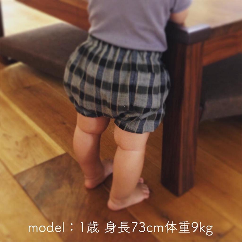 f:id:nanae305:20180516160141j:image