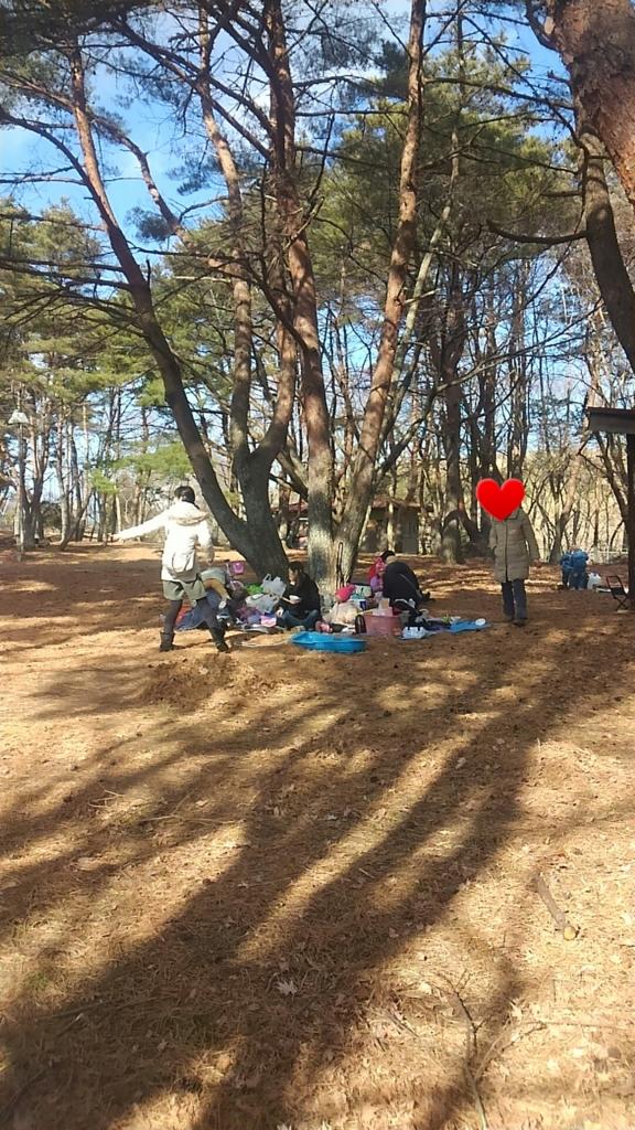 f:id:nanahamakko:20170126221603j:plain