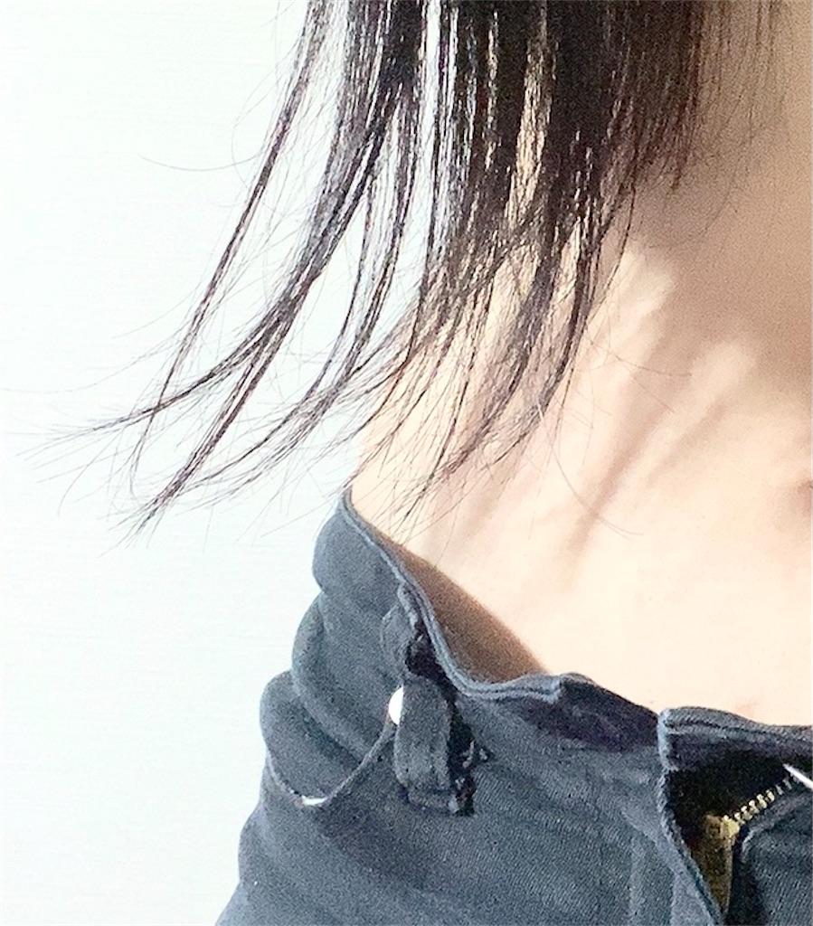 f:id:nanahoshik:20210916002622j:image