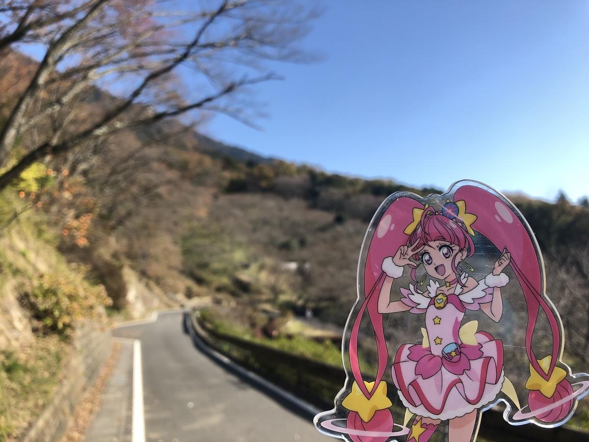 f:id:nanairo9r:20191117193411j:plain
