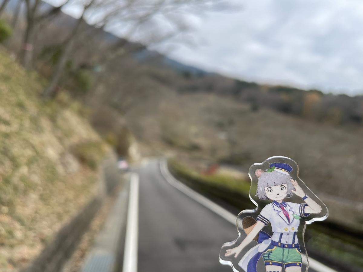 f:id:nanairo9r:20201206201412j:plain