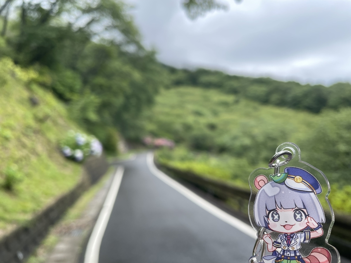 f:id:nanairo9r:20210620211953j:plain