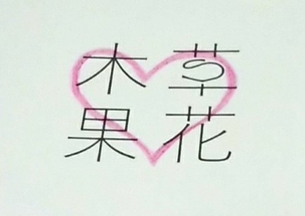 f:id:nanairo_diary77:20190207154745j:image