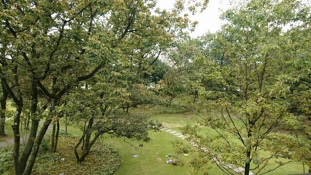 f:id:nanairokobo1011:20161026210135j:image