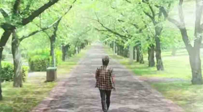 f:id:nanaironokakehashi:20150615221725j:plain