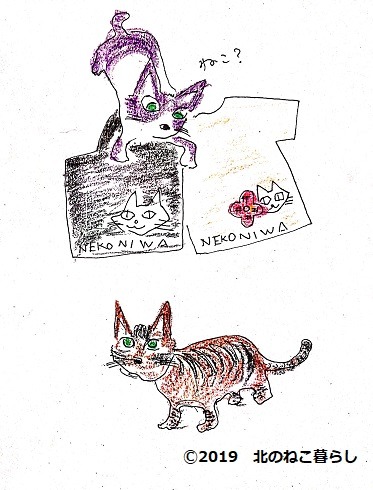 猫庭グッズと猫