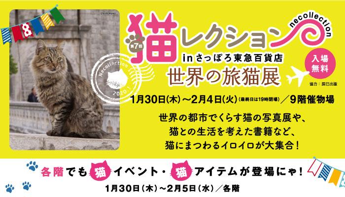 f:id:nanakama:20200202175100p:plain