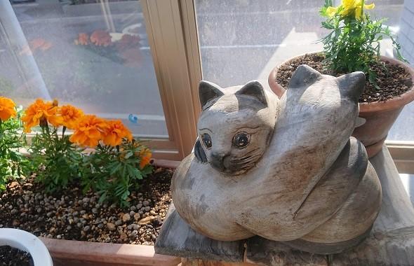 ベランダ 猫 置物