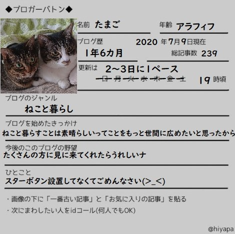 f:id:nanakama:20200709221531j:plain