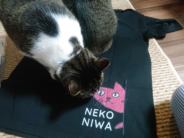 猫庭Tシャツ
