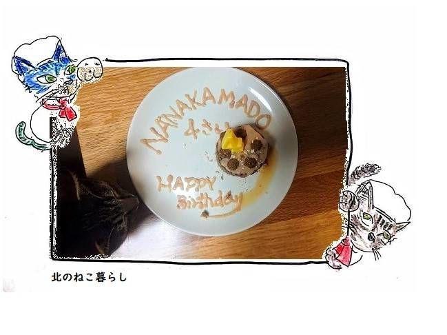 猫 誕生日 ケーキ