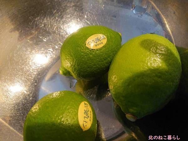 高知 レモン