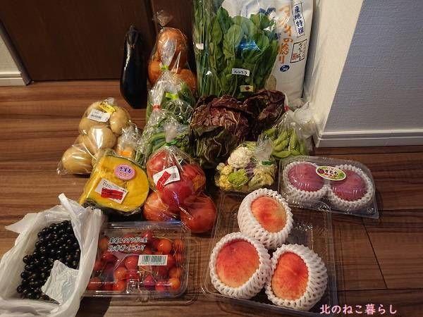 道の駅 野菜 北海道