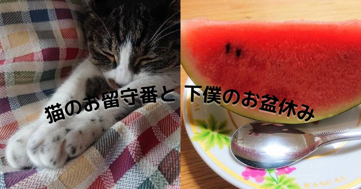 f:id:nanakama:20210817144845p:plain
