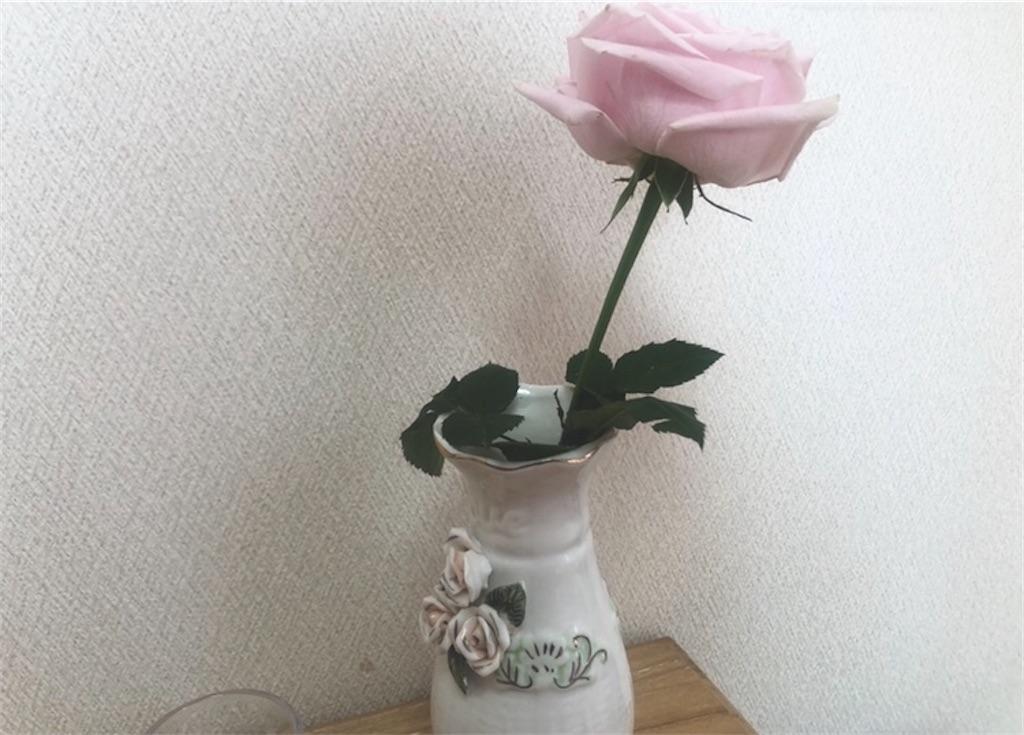 f:id:nanaken75:20200216131711j:image