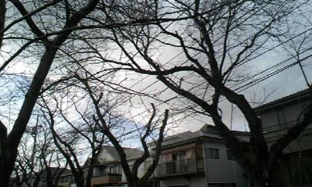 20090216133824
