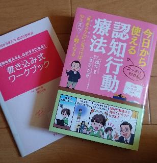f:id:nanakorobijoshi:20180520113535j:plain