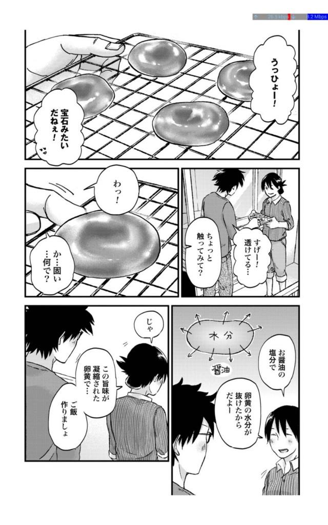f:id:nanami-nanami:20170106124148j:plain