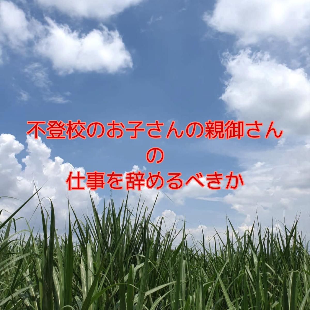f:id:nanamiyuki:20210518072545j:plain