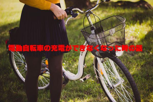 f:id:nanana-blog:20190608213404j:plain