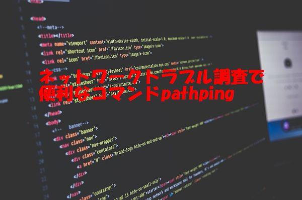 f:id:nanana-blog:20190820215117j:plain