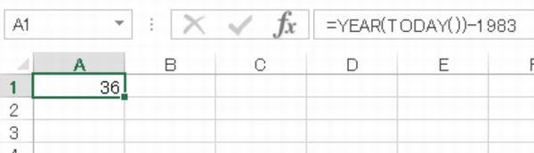 Excel 年齢を表示