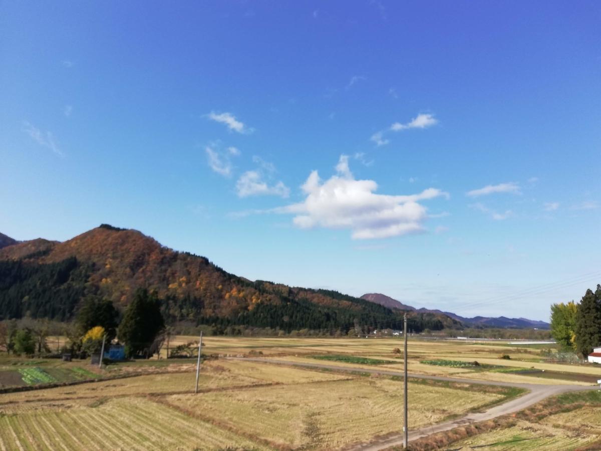 f:id:nanasatoakita:20201113163520j:plain