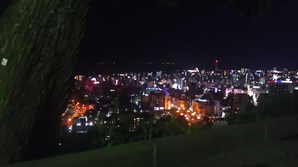 f:id:nanashinonakao:20170116005836j:plain